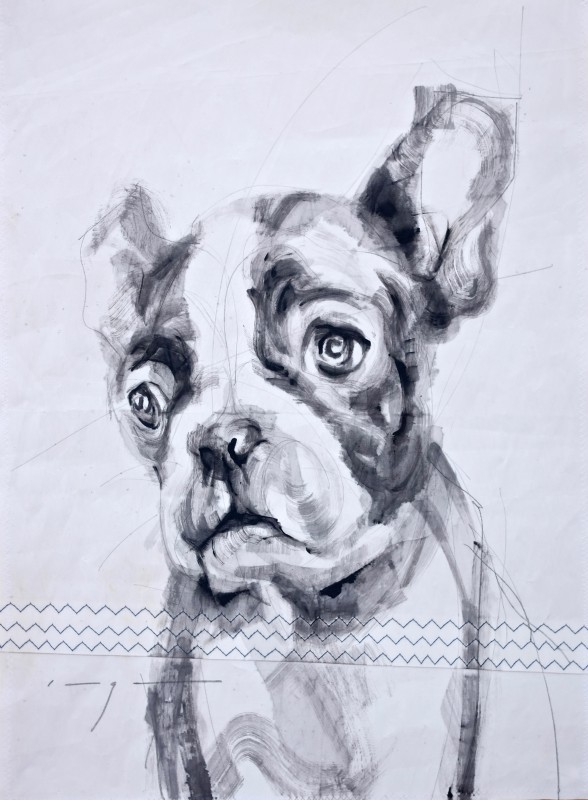 Gallery Culture of Yinbao Guangzhou Gallery China   French bulldog puppy  Acrylic on sailcloth   50x70 cm