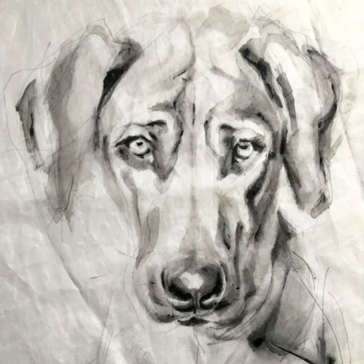 Portrait of Dog Kees | acrylic on sail | 50x70cm | portrait to commission