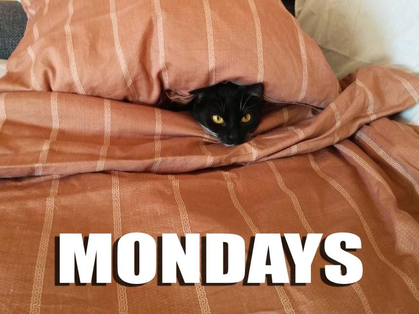 Mondays_Fie_under dynen