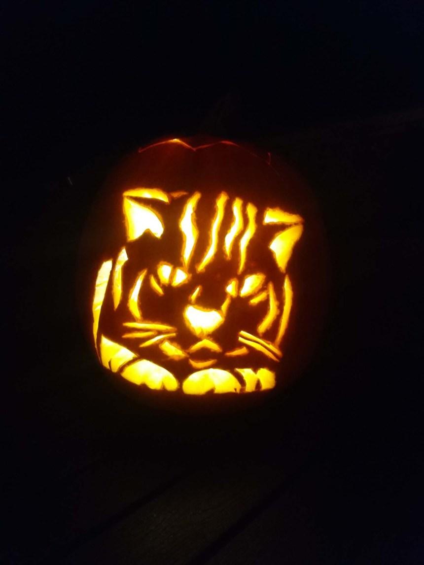 Græskarlampe_kat