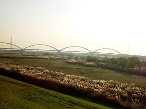 土手の上から見た新三国橋