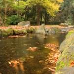 (ネーブルパーク)園内の小川