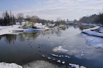 冬の御所沼