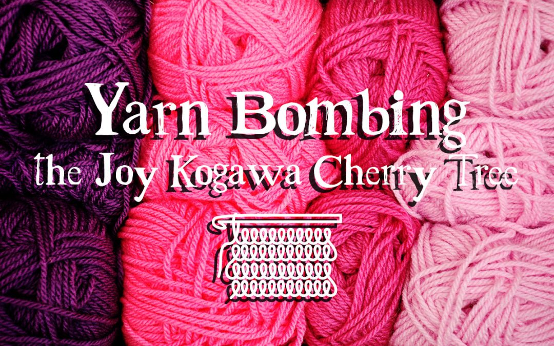 Yarn Bombing the Joy Kogawa Cherry Tree