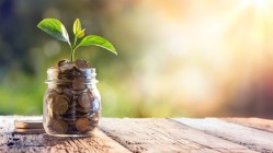 Seedling sitting atop of a glass jar filled with coins