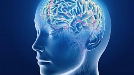 Cervello invecchia precocemente con l'obesità