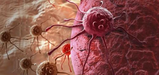 sfortuna e tumore non-e-la-causa-principale-del-tumore-ma-dipende-da-un-errore-del-dna