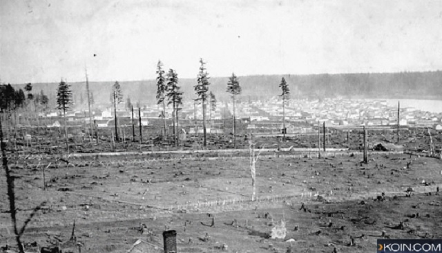 The area that was once known as The Clearing is now known as Portland (KOIN)_151821