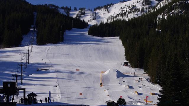 mount-hood skiing_1515432758320.jpg