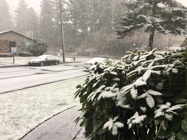 SW portland snow_02182018