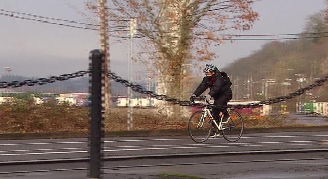 generic bike cyclist_1547145954769.jpg.jpg