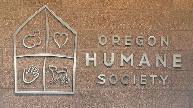 oregon-humane-society-generic-04172014_1521407003837.jpg