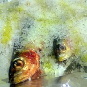 Sardinas sin olor, sardinas en el horno a la sal