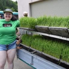 グリーンツーリズム(サワダ先生)田植えをしました