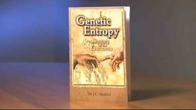 Photo of Genetic Entropy – Part 1