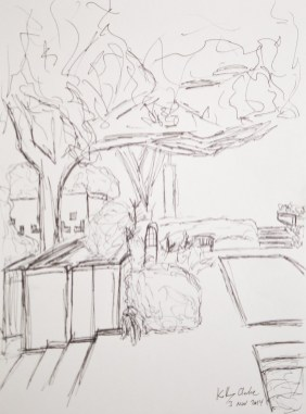 Drawing Class - Outside Meadows