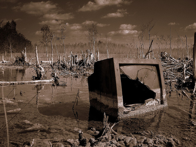 Swamp TV / James Good (CC BY-NC-ND 2.0)