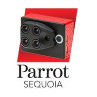 Sequoia-200x200