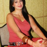 Actress-Laxmi-Rai-Hot-Stills-10
