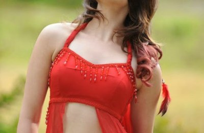 Actress Tamannah Hot Stills (6)