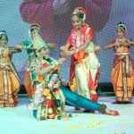 Sri Rasthu Shubha Mastu audio Function Photos (11)