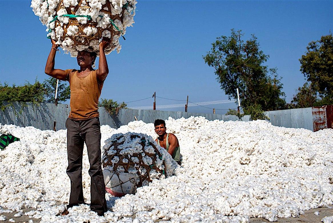 Cotton Industry, American Civil War, Industrial Revolution, Egyptian Cotton, Slavery, KOLUMN Magazine, KOLUMN