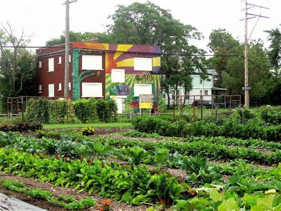 Detroit, Michigan, Urban Farms, KOLUMN Magazine, KOLUMN
