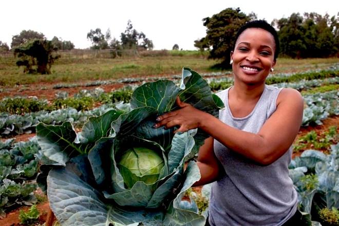 African Business, Agribusiness, African Entrepreneur, Can You Dig It, KOLUMN Magazine, KOLUMN