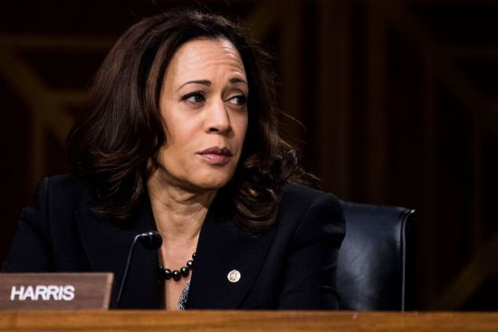 Kamala Harris, African American Politics, Black Politics, African American Vote, Black Vote, Black Votes Matter, KOLUMN Magazine, KOLUMN, The FIVE FIFTHS, Willoughby Avenue