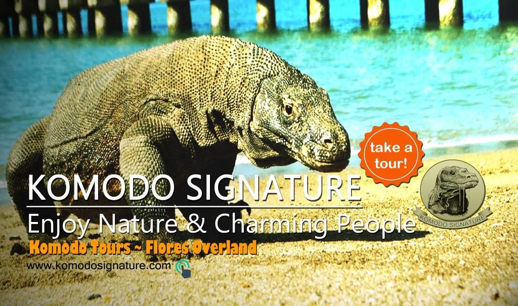 Komodo Signature