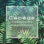 logo-exemple-cbd-by-cebede