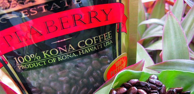 hualalai estate peaberry kona coffee review