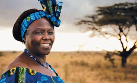 Wangari Maathai1