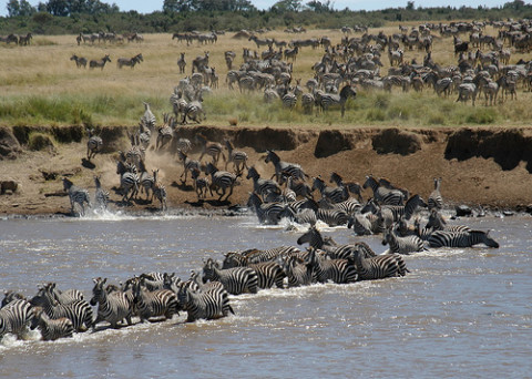 Top 5- Maasai Holiday Destinations in Africa