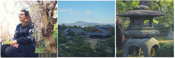 Cherry blossoms and zen garden at Nijo Castle - 8 Ways to see a different side of Kyoto