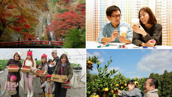 The Budget Traveller's Guide to One Week in Osaka - Seasonal Activity