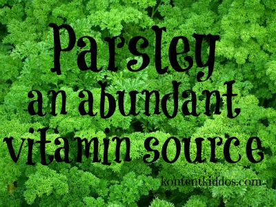 parsley-261040_640