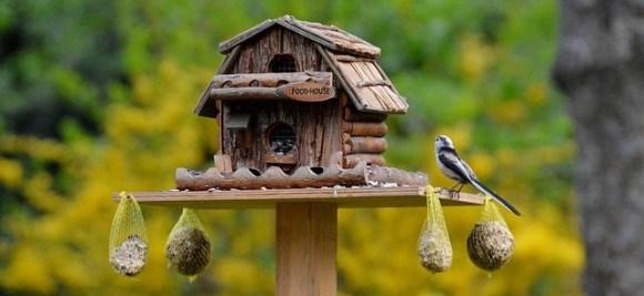 Ins Unternehmensnetzwerk investieren: gut bestücktes Vogelhaus 740970 © Alexandra @ pixabay