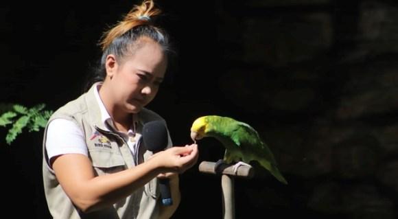 Corporate Relations setzt auf Dialog und langfristige Beziehungen: Mensch füttert Papagei 5_Bsxv_Nbs-VY © ankush-minda @ unsplash