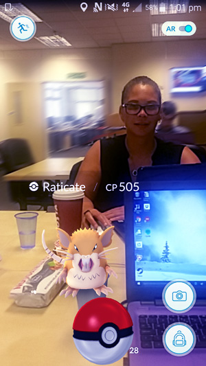 Pokémon in the Koogar Office