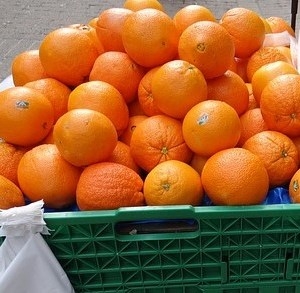 Sinaasappels (vol Sap) – per 10 stuks