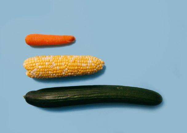 büyüklüğü mü işlevi mihavuç mısır salatalık