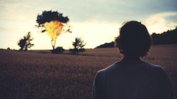 tarlası yanan adam karaharman