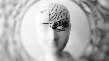 Prefrontal Korteksi Nasıl Geliştirebiliriz?