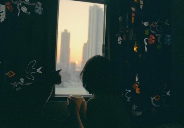 pencere, kadın ve kedi