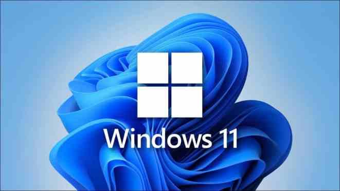 Windows 11 logosu.