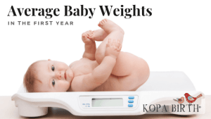 Average Baby Weights in the First Year