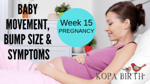 Week 15 Pregnancy - Baby Movement Bump Size and Symptoms