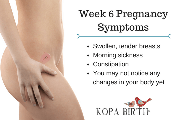 Week 6 Pregnancy Symptoms