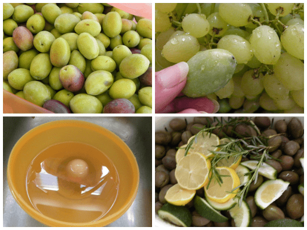 Collage curing olives